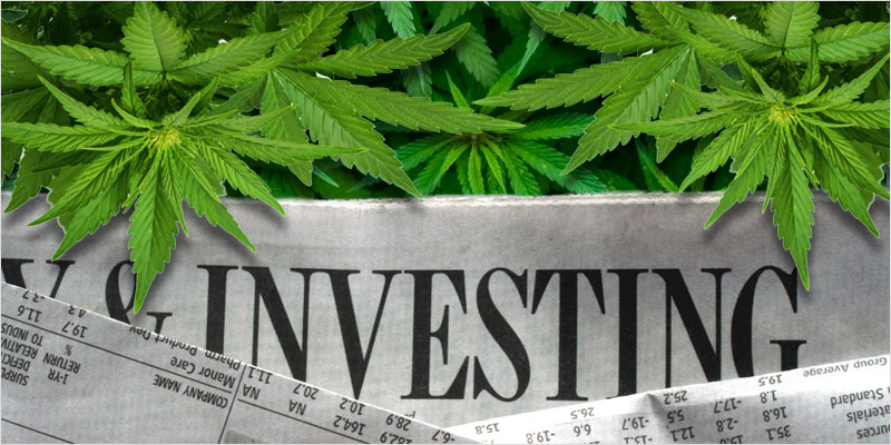 how to invest in marijuana