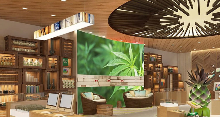 9 Ideas For Small Business In The Cannabis Industry