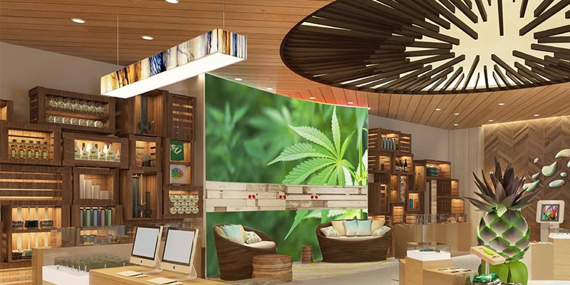 9 Ideas For Small Business In The Cannabis Industry - Marijuana Investor  Summit WCP2018