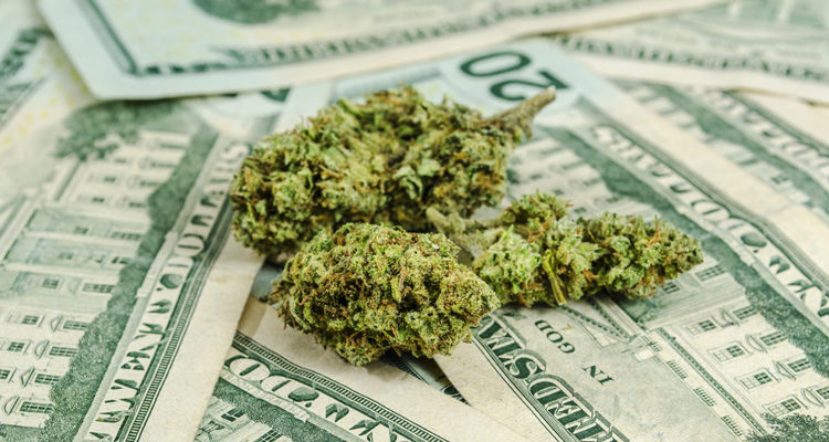 Mistakes To Avoid When Investing In Marijuana