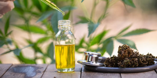 cbd oil for children