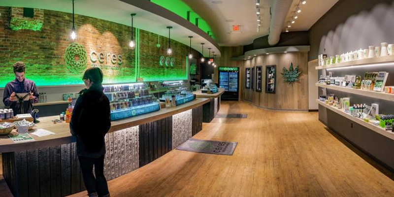 How to Choose a CBD Store