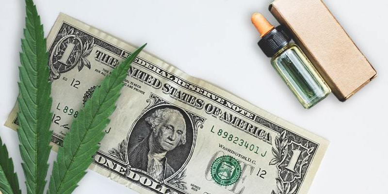 start cbd business