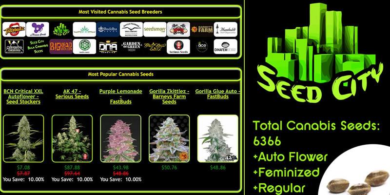 best cannabis seeds online 2021